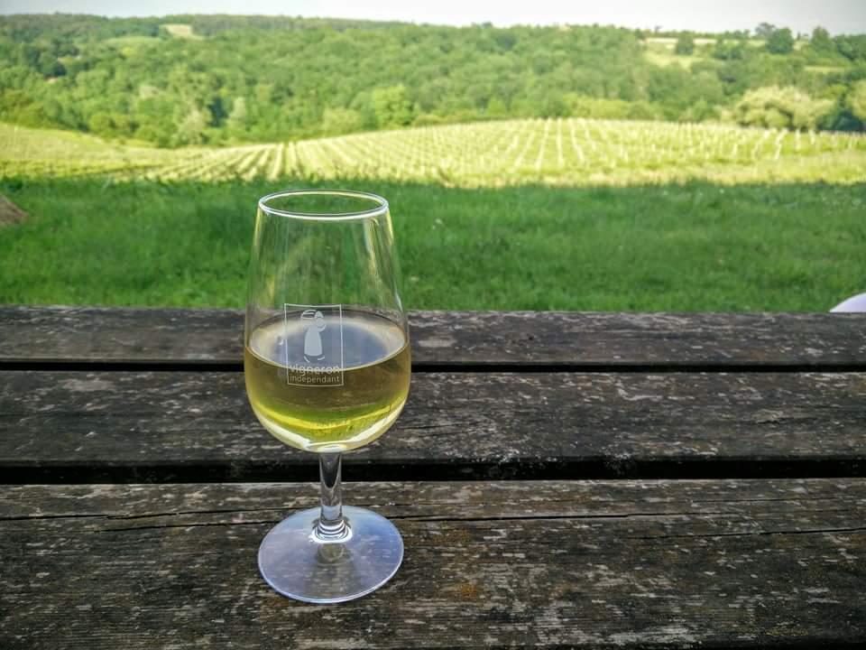 verre de blanc sec vue vignes